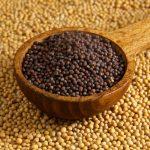 Mustard%20Seed-2